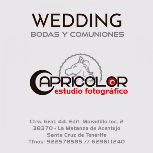 CATÁLOGO-TENCOLOR-WEDDING-BODAS-2020-MAIL-16-800x600-1